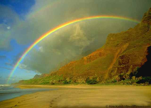 Rainbows Hawaii