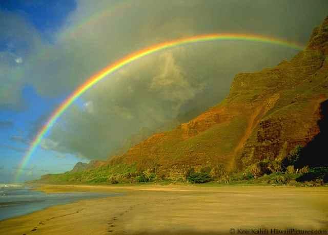 Rainbows Hawaii